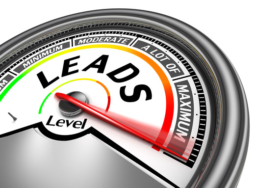 Generate Leads Online